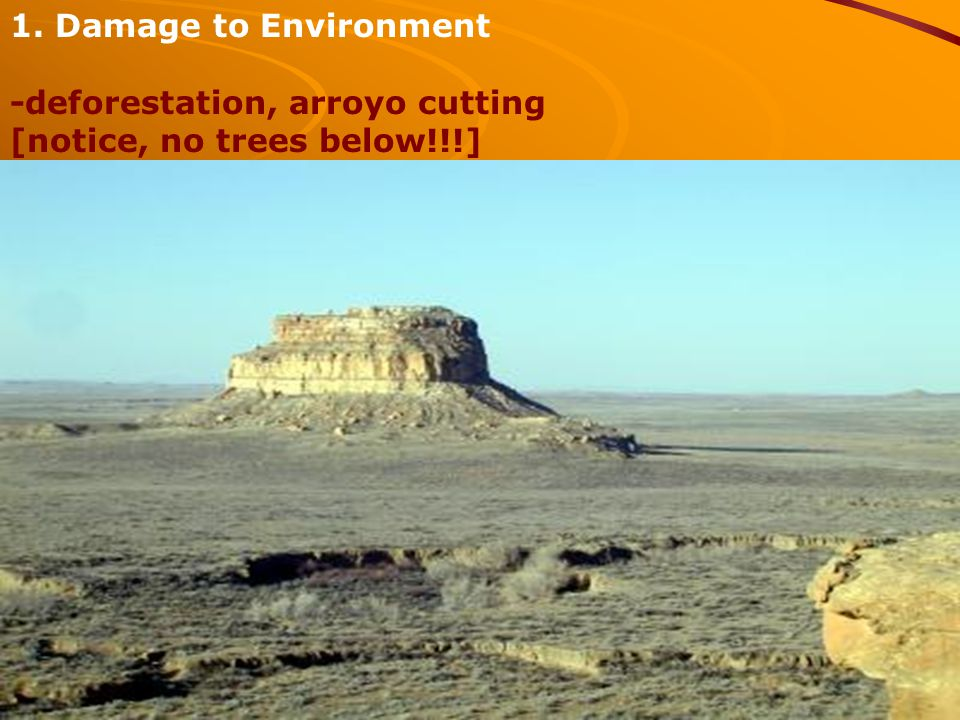 1. Damage to Environment -deforestation, arroyo cutting [notice, no trees below!!!]